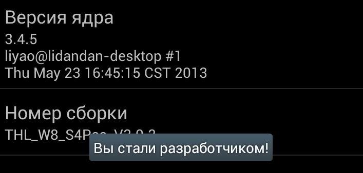 Параметры разработчика_1