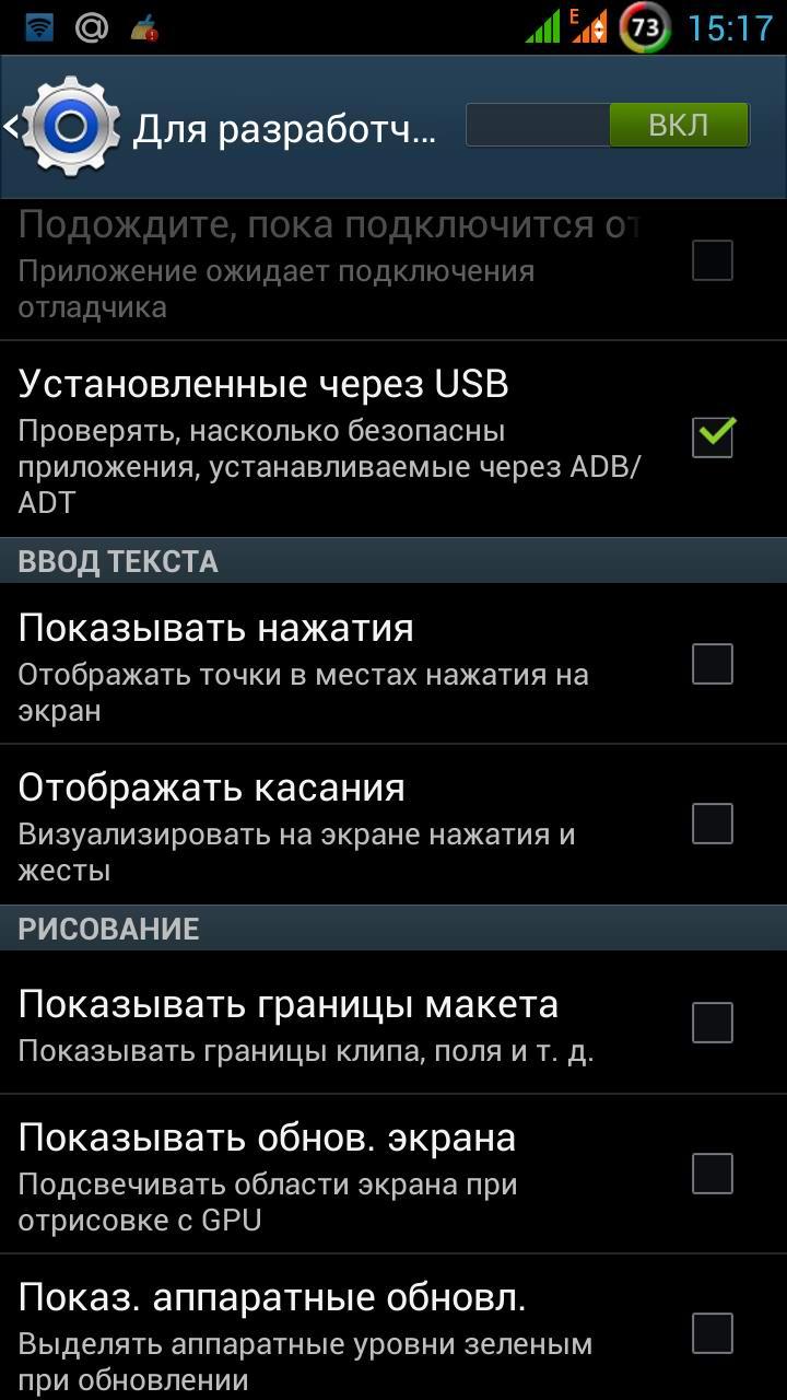 Параметры разработчика_4