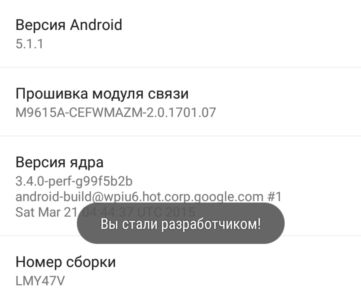you are developer