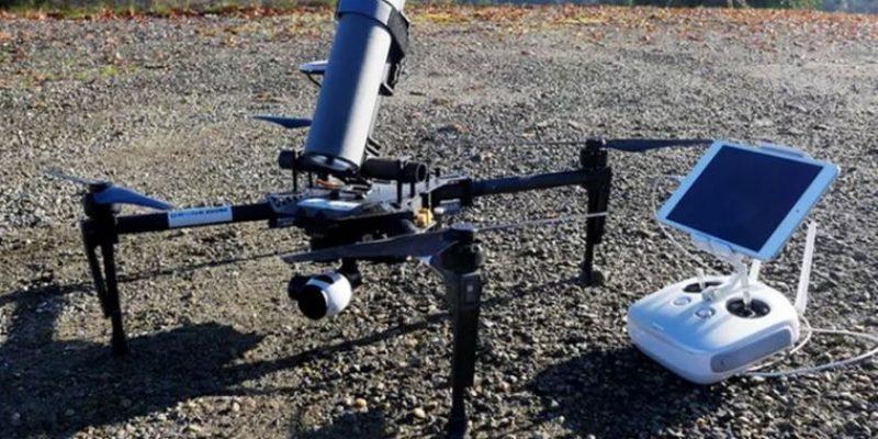 Drone Volt – убийца азиатских шершней